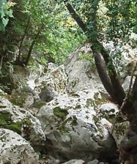 The gorge of Tsakonas,island kythera